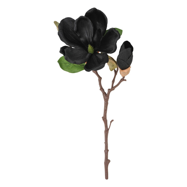 Art Flower Magnolia Black