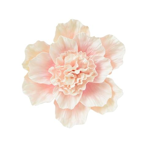 WALL FLOWER PEONY SMALL PINK