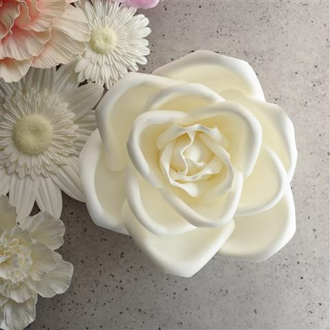 WALL FLOWER Rose Medium White