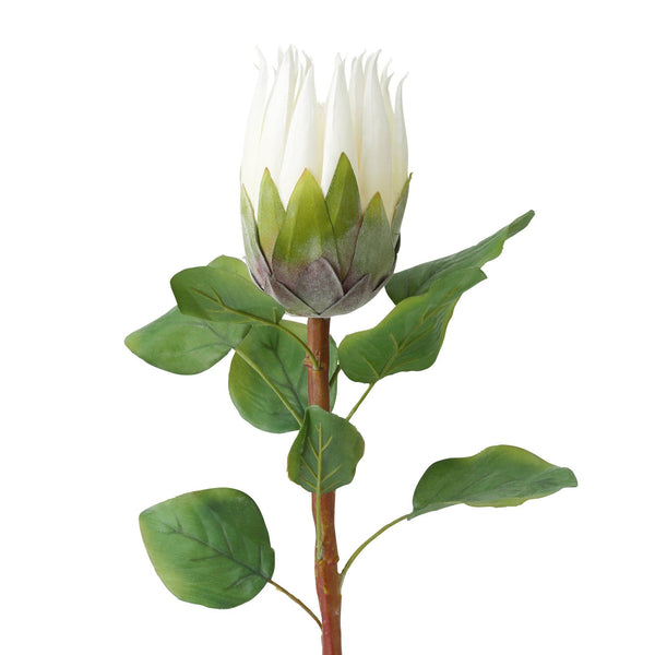 ARTFLOWER KING PROTEA WHITE