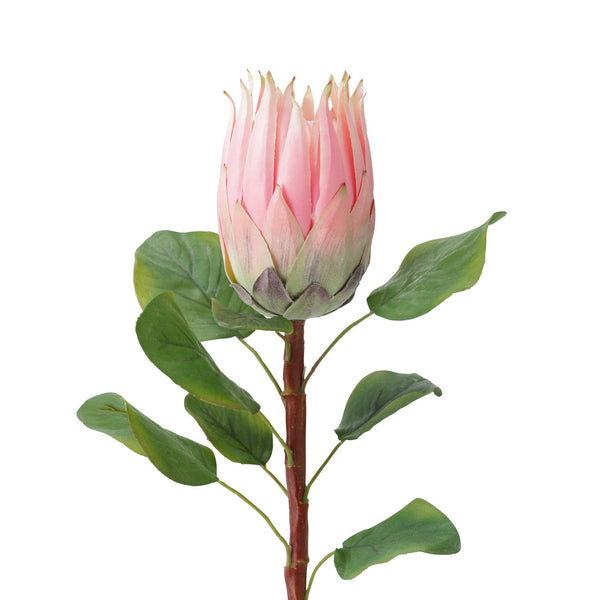 ARTFLOWER KING PROTEA PINK