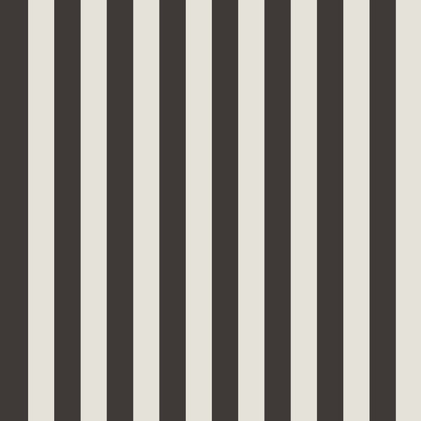 REMOVABLE WALL PAPER STRIPE BLACK
