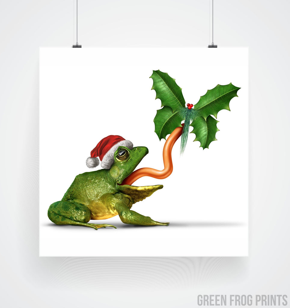 Christmas Frog & Butterfly Picture Cool Poster Print Art Unusual Holiday Decor