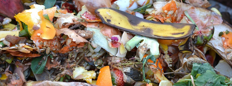 What does the word compostable mean to you and the future?