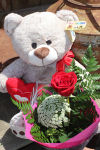Single Red Rose and Teddy