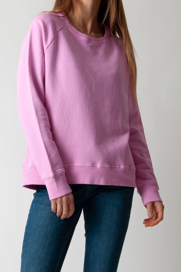 Jumper 1234 - Cotton Sweatshirt in Neon Pink