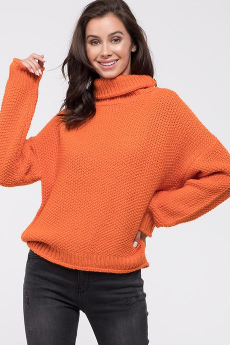 Solid Knit Turtleneck Sweater