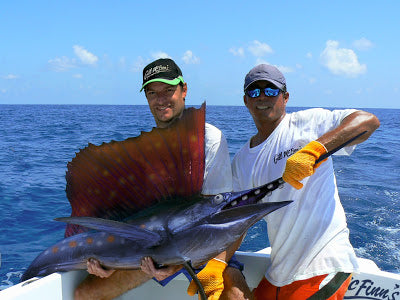 toothed-sailfish.jpg
