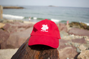 Red Sea Turtle hat