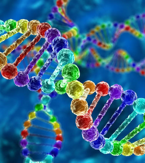 how does genetics affect nutrition