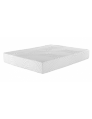 "10"" Performance Memory Foam"