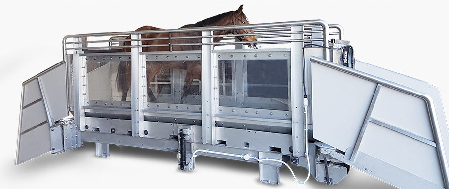 Dry Horse Treadmill (from $65,000 + GST) - Animal Rehabilitation Australia