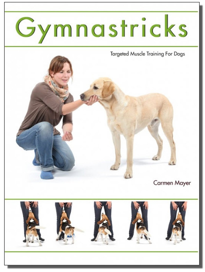 Gymnastricks: Targeted Muscle Training for Dogs - Animal Rehabilitation Australia