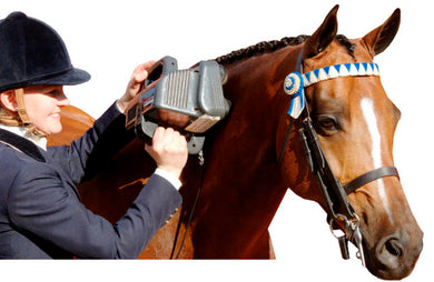 Equine Professional Massager - Animal Rehabilitation Australia