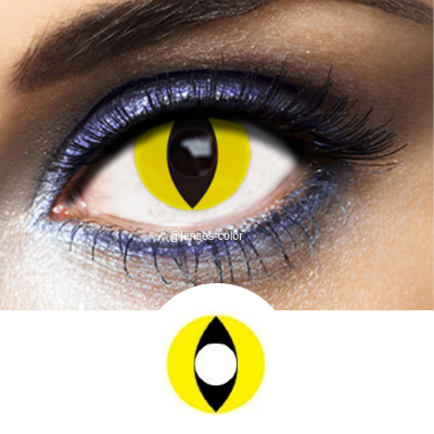 Yellow Contacts Cat - Crazy Lenses of 1 Year Use