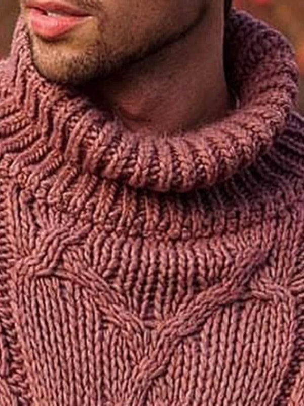 Plain Turtleneck Standard Casual Winter Sweater