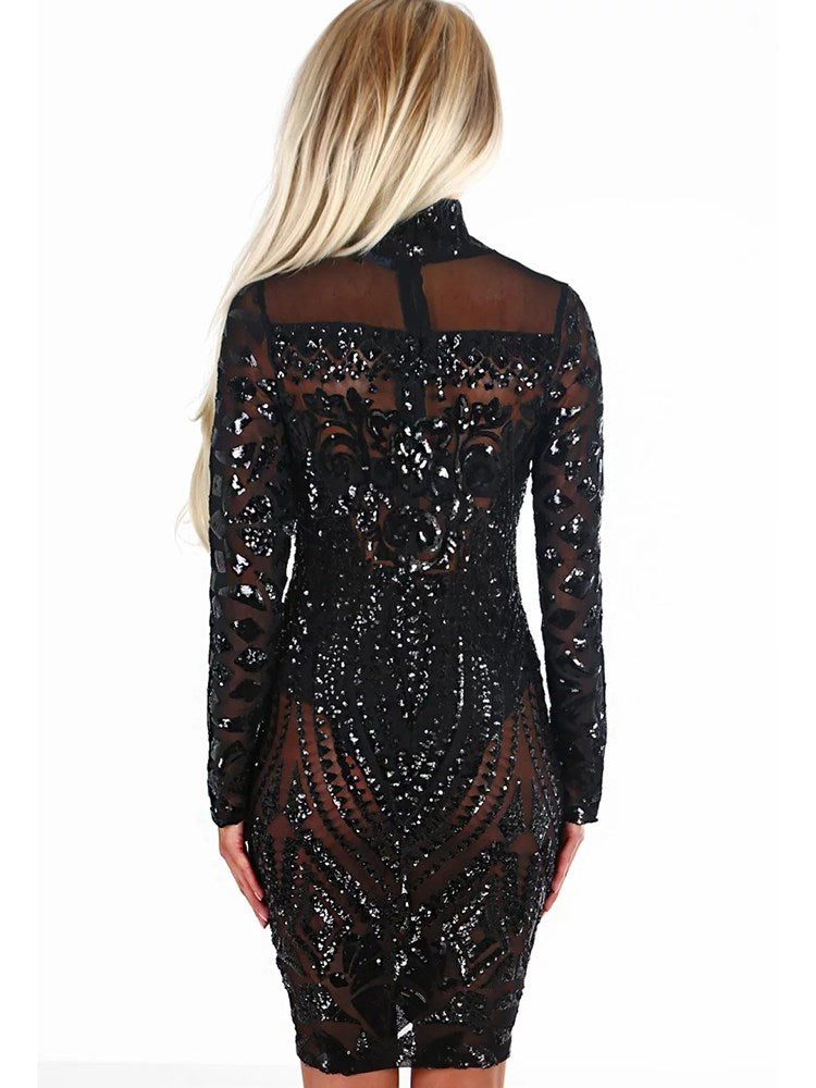Long Sleeve Knee-Length Mesh Regular Zipper Dresses