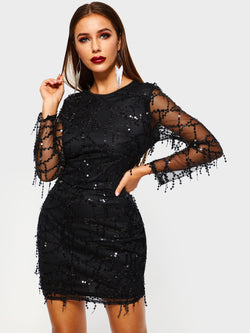 Mesh Round Neck Long Sleeve Standard-Waist Bodycon Dresses