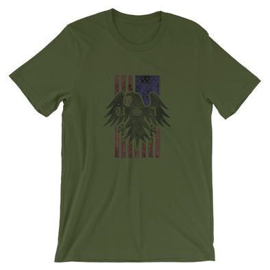 USA Flag and Eagle T-Shirt