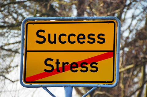Sign that says Success, with the word stress crossed out