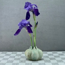 Load image into Gallery viewer, Ikebana Pod Vase