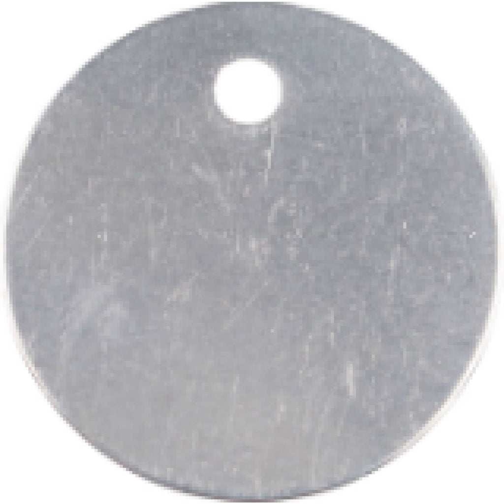 Charm or Pet Tag - 1 Circle / Silver - Bags & Apparel