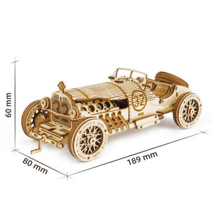 3D Wooden Mechanical Model Puzzle