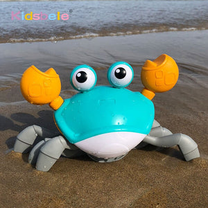 Walking Crab Toy
