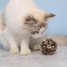 Load image into Gallery viewer, Handmade Cat Toys Ball Matatabi Sticks