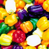 Paprika Sweet Bell Pepper Seeds 100pcs 6 Color mixed - Lovely Seeds