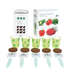 Indoor Veggie Garden Grow Kit | Zucchini, Strawberry, Sweet Pepper, Hot Pepper & Green Beans - Lovely Seeds