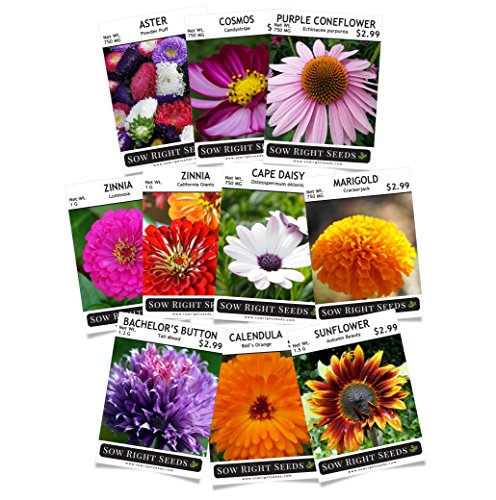 Flower Seeds Garden Collection 10 varieties - Lovely Seeds