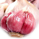 Garlic Seeds 100pcs Pure Natural And Organic Vegetable Seeds - Lovely Seeds