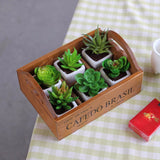 Garden Planter Flower Pot for Succulent Plants Nursery - Lovely Seeds