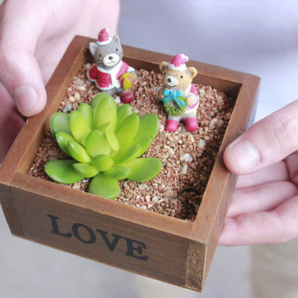 Natural Wooden Succulent Plant Flower Bed Pot Box 10 x 10 x 5 cm - Lovely Seeds