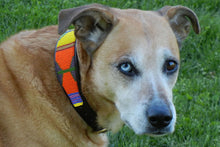 "Load image into Gallery viewer, ""Hippo Circus"" Beaded Dog Collar"