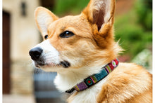 "Load image into Gallery viewer, ""Bijou"" Beaded Dog Collar"