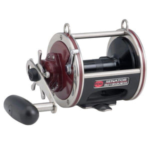 Penn Special Senator Wide Conventional Reels