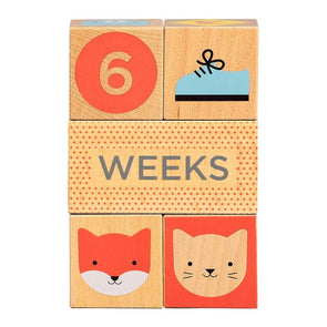 Petit Collage Baby Milestone Blocks - Organic Baby Clothes, Kids Clothes, & Gifts | Parade Organics