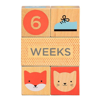 Petit Collage Baby Milestone Blocks - Parade Organics