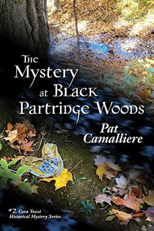 The Mystery at Black Partridge Woods, by Pat Camalliere