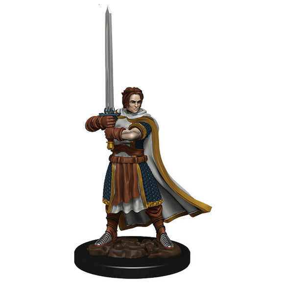 D&D Icons of the Realm: Premium Figures - Human Male Cleric (Wave 4)