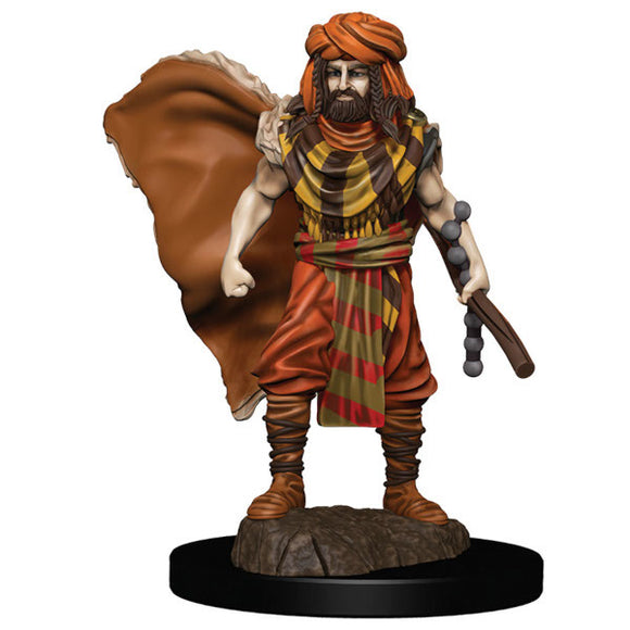 D&D Icons of the Realm: Premium Figures - Human Male Druid (Wave 4)