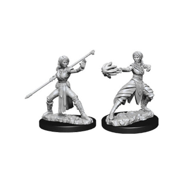 D&D Nolzur's Marvelous Miniatures: Female Half-Elf Monk (Wave 10)