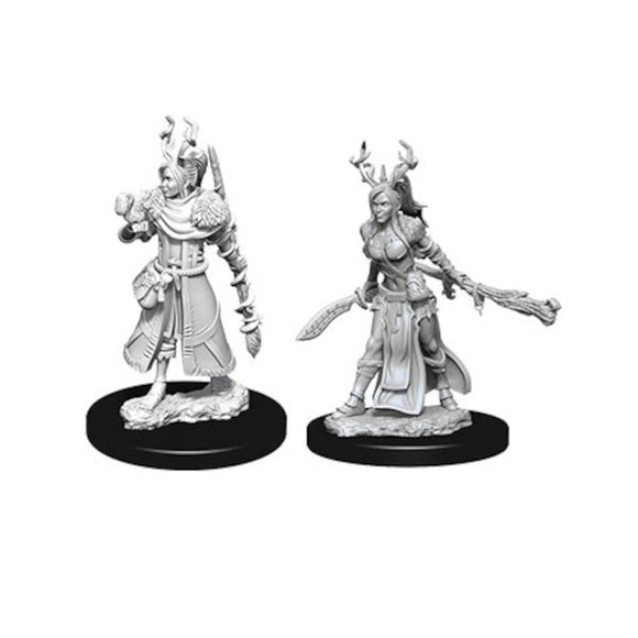 D&D Nolzur's Marvelous Miniatures: Female Human Druid (Wave 9)