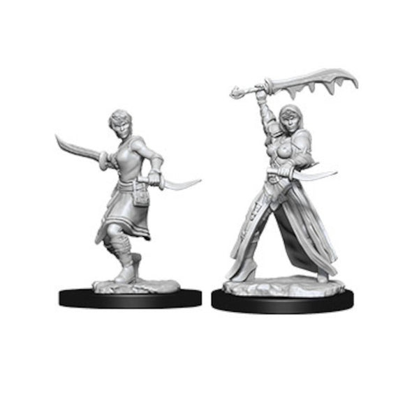 D&D Nolzur's Marvelous Miniatures: Female Human Paladin (Wave 10)