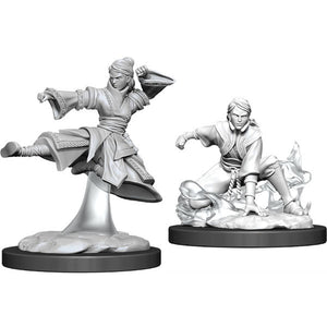 D&D Nolzur's Marvelous Miniatures: Female Human Monk (Wave 11)