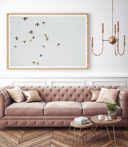 Birds Of A Feather Photographic Art Print