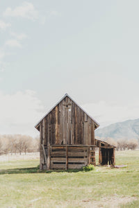 Timber Barn Photographic Art Print
