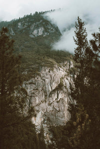 Yosemite Through The Trees Photographic Art Print
